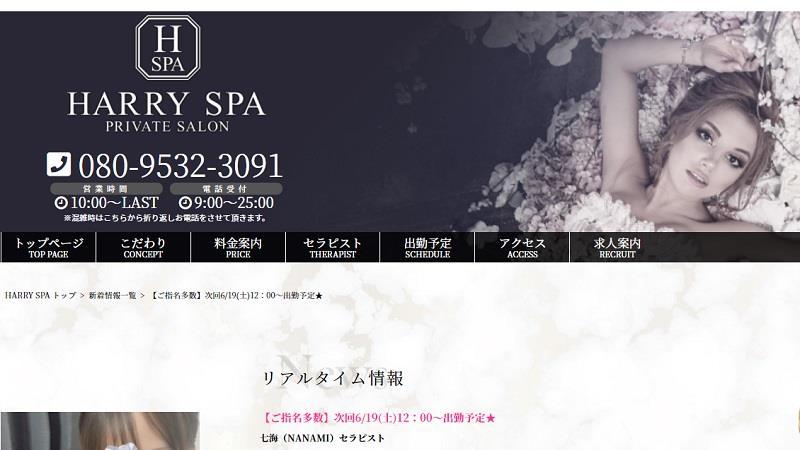 おススメセラピスト:HARRY SPA(ハリースパ)~大阪梅田メンズエステ~