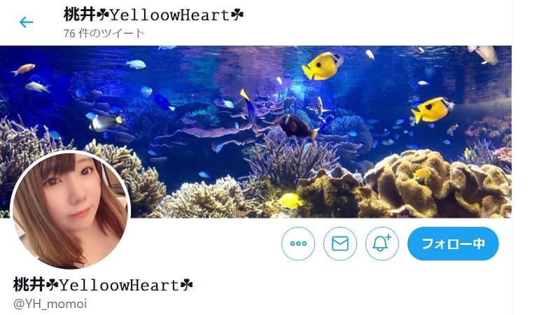 イエローハート桃井twitter
